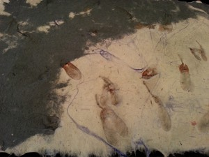 Handmade paper embedded with silk fibers and maple seeds.