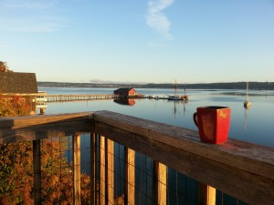 This was my view one sunny morning.  Coupeville on Penn Cove of Whidbey Island is a beautiful place.